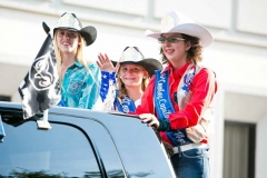 2014 Rodeo Parade